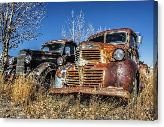 Old Trucks Canvas Print