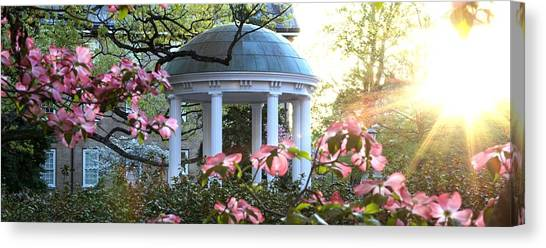 University Of North Carolina Chapel Hill Canvas Print - Old Well Dogwoods And Sunrise by Matt Plyler