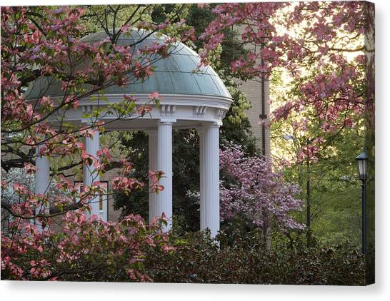 University Of North Carolina Chapel Hill Canvas Print - Old Well With Dogwoods by Matt Plyler