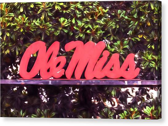 University Of Mississippi Ole Miss Canvas Print - Ole Miss Magnolias by JC Findley