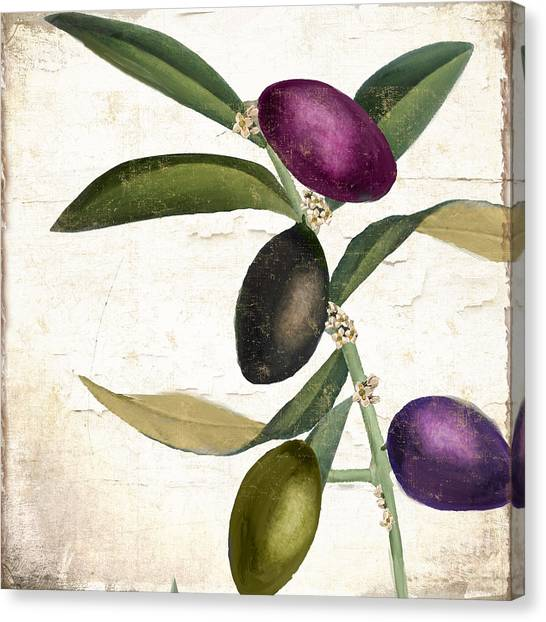 Olive Oil Canvas Print - Olive Branch Iv by Mindy Sommers