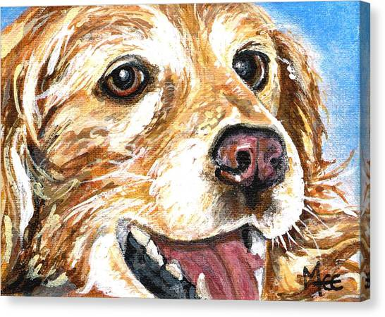 Oliver From Muttville Canvas Print