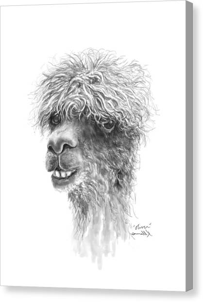 Canvas Print - Oliver by K Llamas