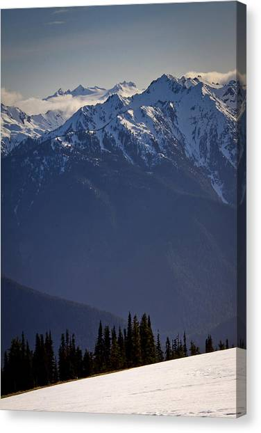 Olympic National Park Canvas Print