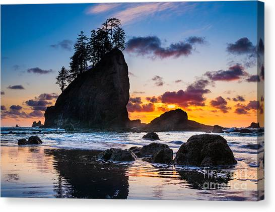 Olympic National Park Canvas Print - Olympic Sunset by Inge Johnsson