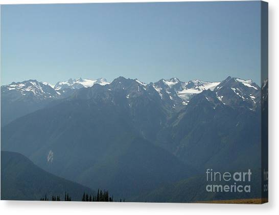 Olympics From Hurricane Ridge Canvas Print