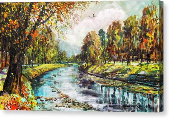 Olza River Canvas Print
