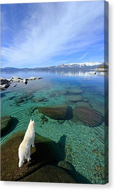 Canvas Print featuring the photograph  On A Clear Day You Can See Forever by Sean Sarsfield