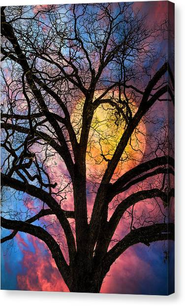 Tropical Stain Glass Canvas Print - On A Moonlit Night by Debra and Dave Vanderlaan