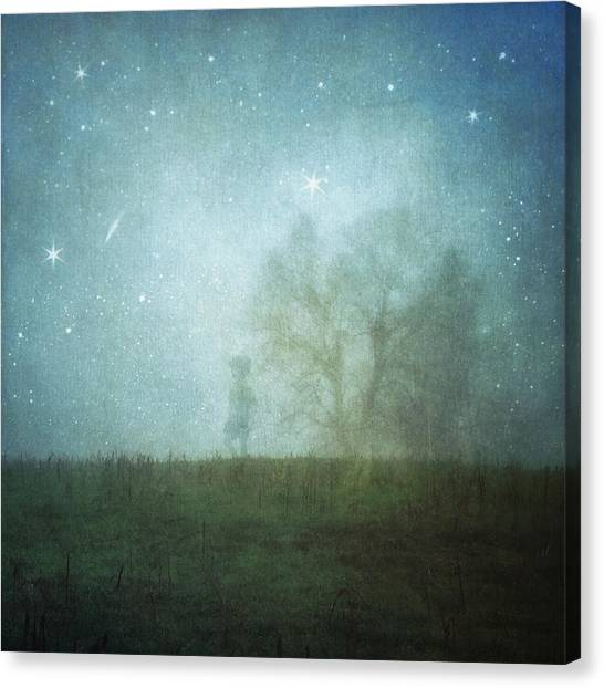 On A Starry Night, A Boy And His Tree Canvas Print