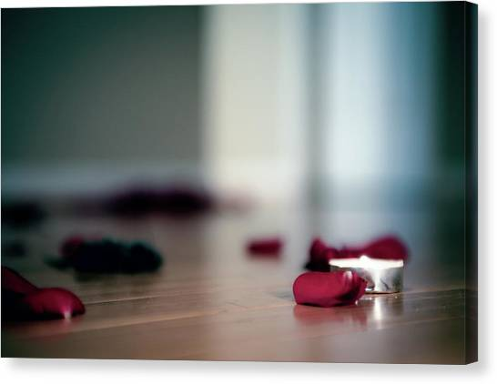 Canvas Print featuring the photograph On Nature, Tragedy, And Beauty II by Break The Silhouette