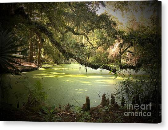 Alligators Canvas Print - On Swamp's Edge by Scott Pellegrin