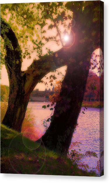 On The Bank Canvas Print