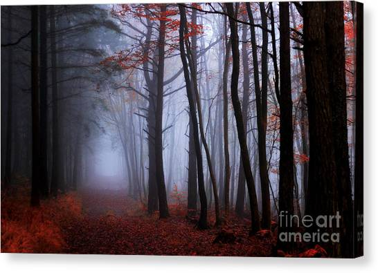 On The Footprints Of Merlin The Wizard Canvas Print