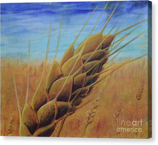 On The Kanza Canvas Print
