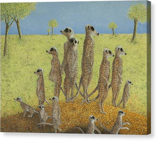 Meerkats Canvas Print - On The Lookout by Pat Scott