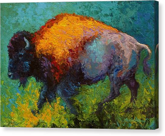 Bison Canvas Print - On The Run by Marion Rose