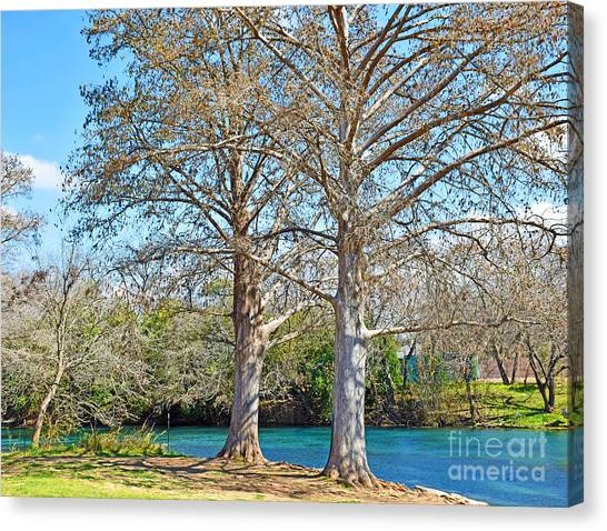 Sun Belt Canvas Print - On The San Marcos River Texas by Ray Shrewsberry