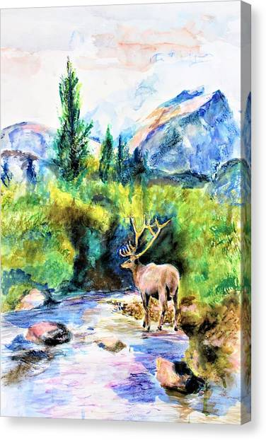 On The Stream Canvas Print