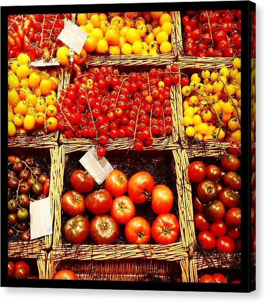 Ketchup Canvas Print - On The Vine Every Time. #tomatoes by Shireen Dhaliwal