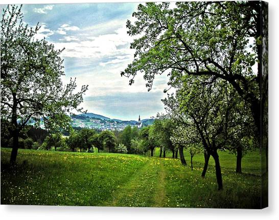 On The Way To Gramastetten ... Canvas Print