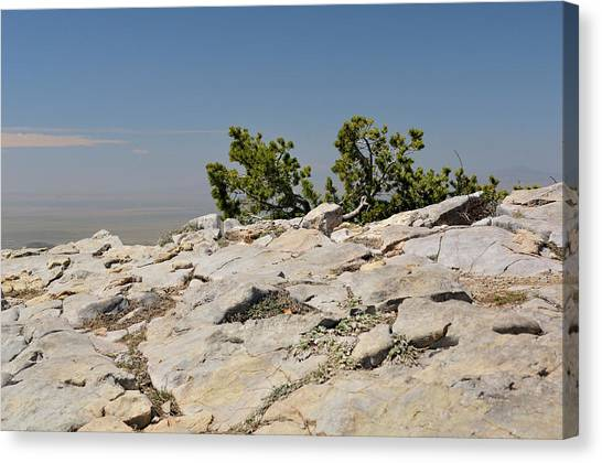 On Top Of Sandia Mountain Canvas Print