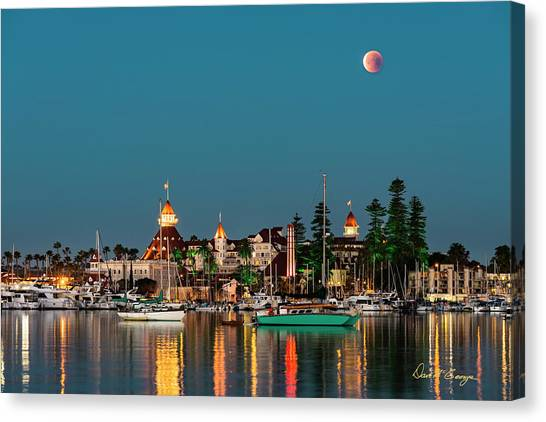 Once In A Lifetime Canvas Print