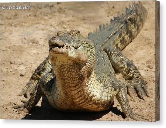 One Crazy Saltwater Crocodile Canvas Print