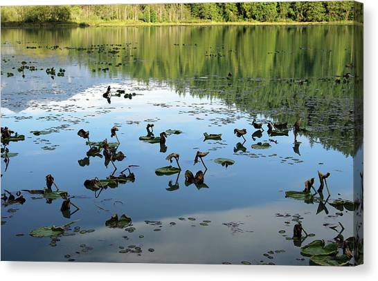 One Mile Lake Reflections 1 Canvas Print by Walter Fahmy