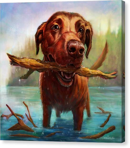 Labrador Retrievers Canvas Print - One More Throw by Sean ODaniels