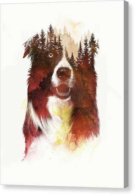 Border Collies Canvas Print - One Night In The Forest by Robert Farkas