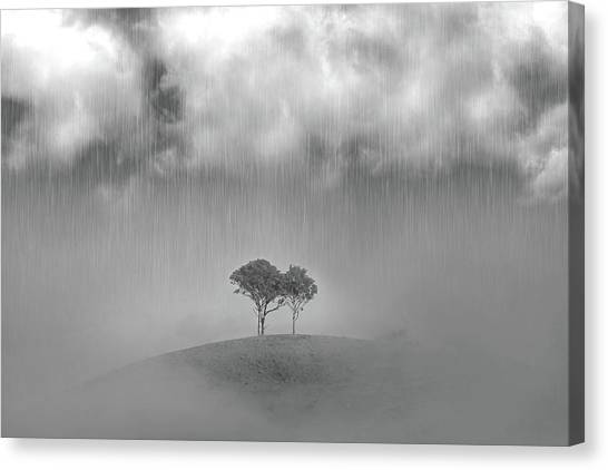 Wine Country Canvas Print - One Of Those Days by Az Jackson