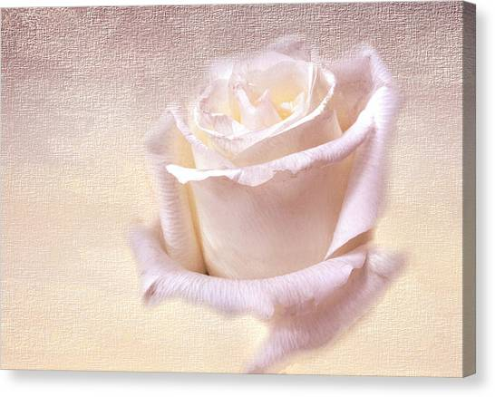 One Rose Is Enough For The Dawn Canvas Print