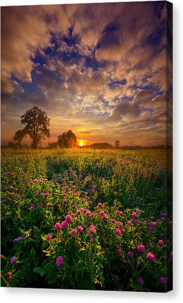 Clover Canvas Print - One Step Closer by Phil Koch