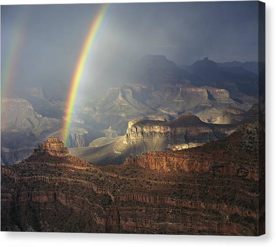 Grand Canyon Canvas Print - O'neill Butte Rainbow by Mike Buchheit