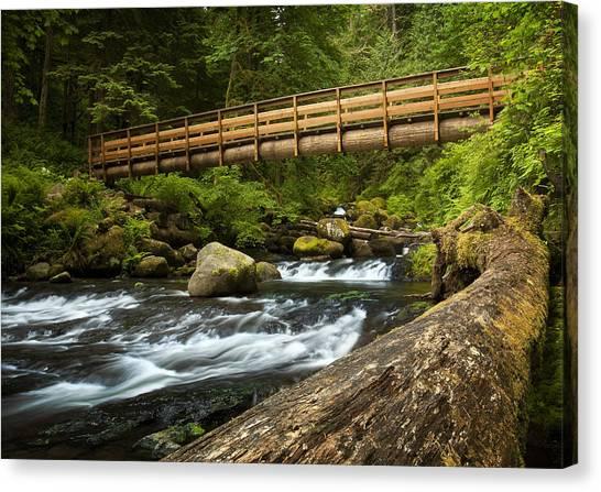 Oneonta Creek Crossing Canvas Print