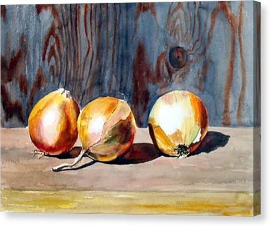 Onions In The Sun Canvas Print by Anne Trotter Hodge
