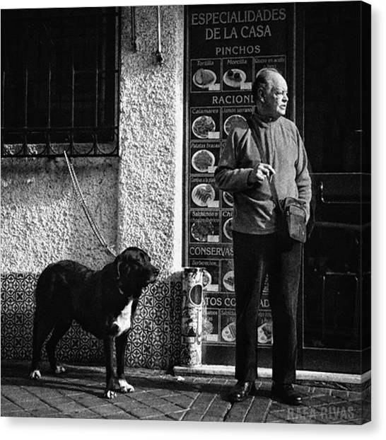 Bar Canvas Print - Onlookers  #señpr #dog #animals #pet by Rafa Rivas