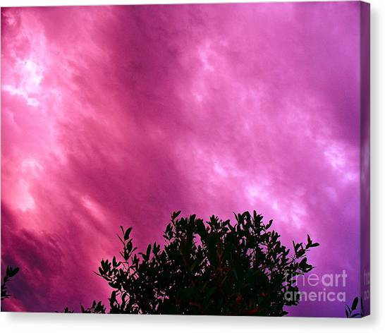 Only Chance To See This Canvas Print by Chuck Taylor