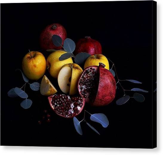 Opal Apples And Pomegranates Canvas Print