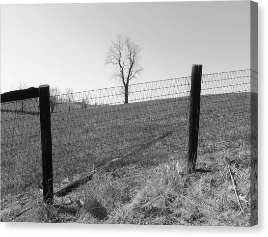 Open Land Canvas Print