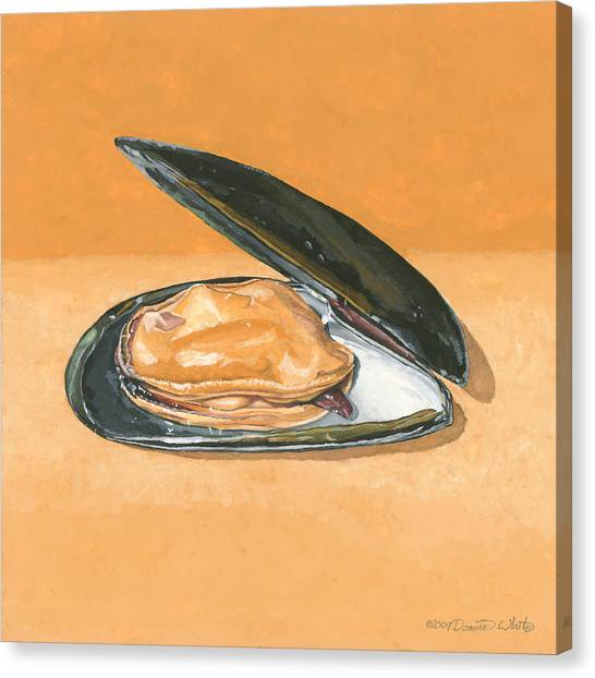 Open Mussel Canvas Print