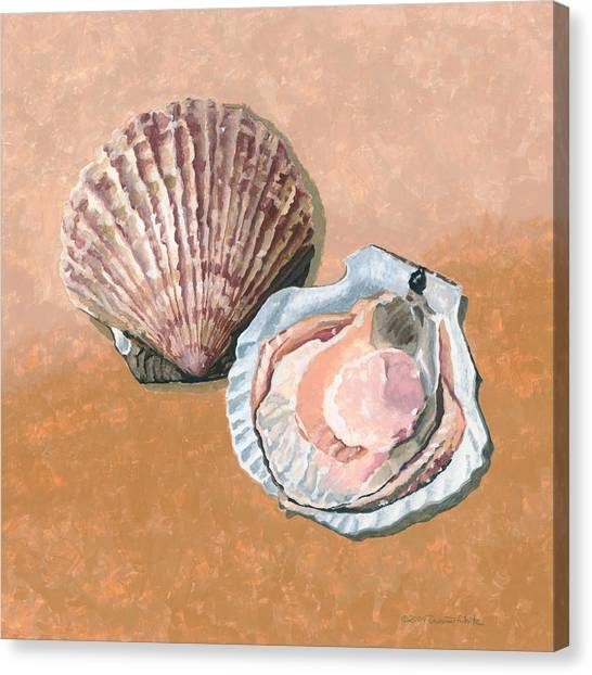 Open Scallop Canvas Print
