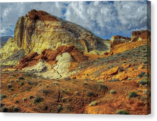 Open Trail Canvas Print by Stephen Campbell