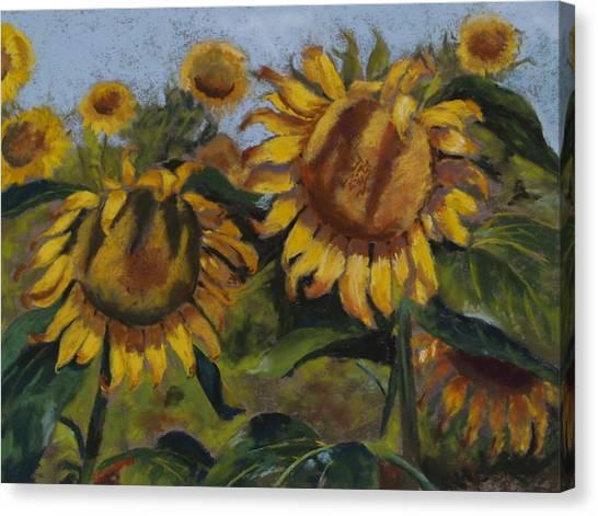 Opposites Attract Canvas Print by Sarah Bernhardt