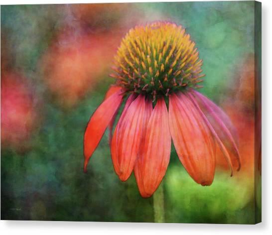 Orange Coneflower 2576 Idp_2 Canvas Print