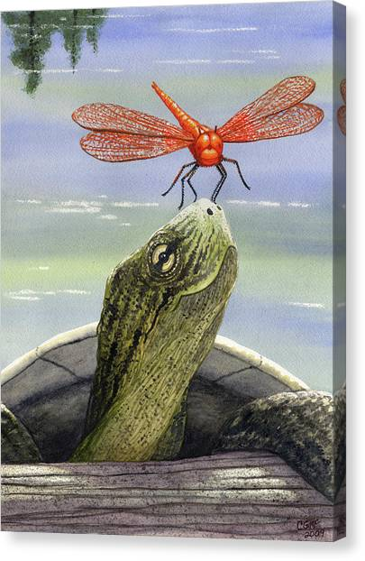 Turtles Canvas Print - Orange Dragonfly by Catherine G McElroy