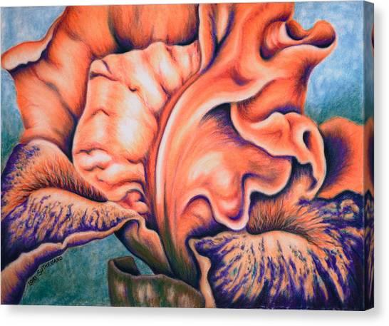 Orange Iris Canvas Print