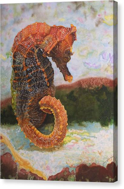 Orange Sea Horse At Rest. Canvas Print by Jan  Spangler