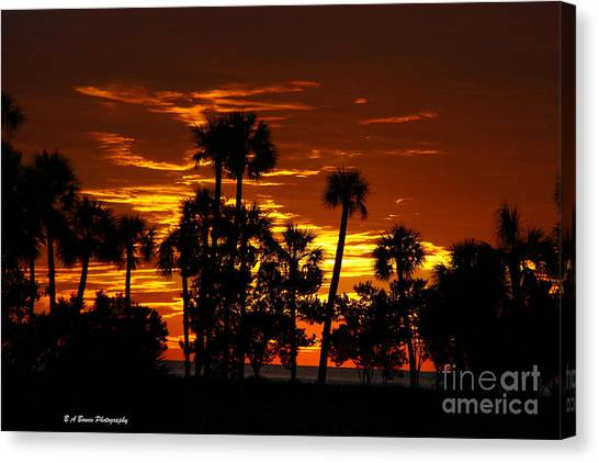 Orange Skies Canvas Print